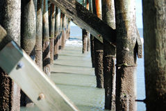 Under the pier during low tide at Isle of Palms in Charleston, SC. Stock Photo