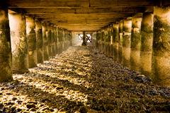 Under the Pier. Smelly, dirty and scary...but so mysterious and beautiful. Under a pier in Alcochete, Portugal Stock Images
