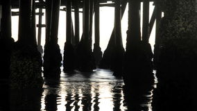 Under the Pier - Time Lapse - Clip 1 stock video