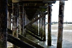 Under the Pier, White Rock, BC stock images