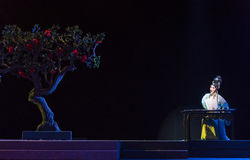 "Under the pomegranate tree-Royal Garden-Jiangxi opera ""Red pearl"" Royalty Free Stock Photography"