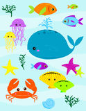 Under The Sea. Various underwater creatures - fish, whale, crab, and other sea life Royalty Free Stock Image
