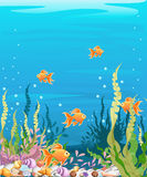 Under the sea background Marine Life Landscape - the ocean and underwater world with different inhabitants. For print, crea. Marine Life Landscape - the ocean royalty free illustration