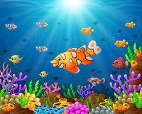 Under the sea. Illustration of under the sea Royalty Free Stock Images