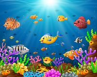Under the sea. Illustration of under the sea Royalty Free Stock Photography