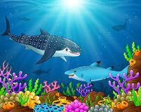 Under the sea. Illustration of under the sea Stock Photo
