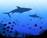 Under the Sea & Ocean-Vector Stock Photos