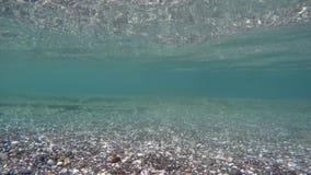 Under the sea - pebble stock footage