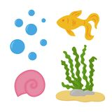 Under the sea. Underwater set with bubbles, gold fish, seawheed and pink spiral seashell. Vector illustration. Isolated on white background Royalty Free Stock Images