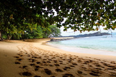 Under the shade of a tree in a beautiful beach with clear water in Sao Tome and Principe Island, in Africa Royalty Free Stock Images