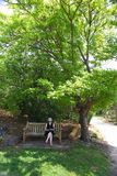 Woman under shady tree in park Royalty Free Stock Photography