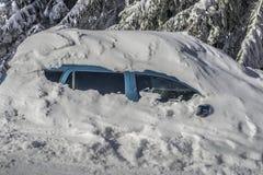Under snowen Fotografering för Bildbyråer