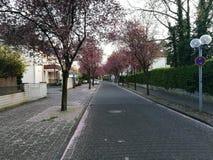 Under solen för Dusseldorf stads` s arkivfoton
