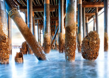 Under Stearn's Wharf in Santa Barbara California Stock Images