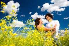 Under summer sky Royalty Free Stock Image