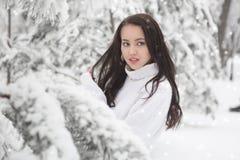 Under Sun Frosty Scene Arkivbilder