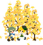 Under the tree of ginkgo-2 Stock Photo