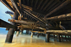 Under a trestle Royalty Free Stock Photos
