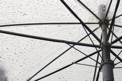 Under the umbrella in rainy day. Raindrops on the umbrella Stock Photos