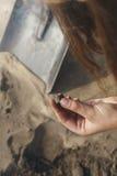 Under utgrävningarna grundar arkeologen något Arkivbilder