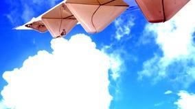 Under vingen av Garuda Indonesia Arkivbilder