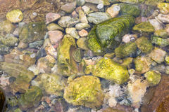 Under water boulders background Stock Photo