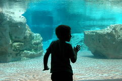 Under water boy Stock Photo