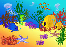 Under water life Royalty Free Stock Images