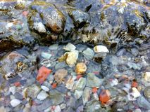 Under water pebbles stock photography