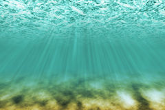 Under water scene. With light rays as background Royalty Free Stock Images