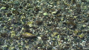 Under water in the sea and waving. Under water in the sea stock video footage