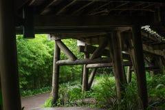 Under the wood bridge. Stock Photo