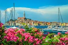 Underbar cityscape med Rovinj den gamla staden, Istria region, Kroatien, Europa royaltyfria foton