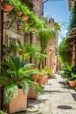 Underbar dekorerad gata i liten stad i Italien Royaltyfria Foton