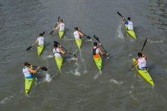 Underbar kayaking show Arkivfoton