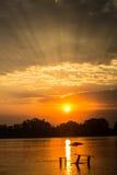 underbar morgon Arkivbilder