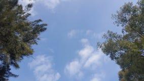 Underbar sky arkivfoton