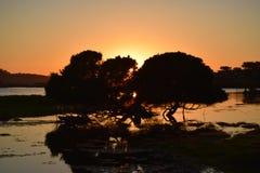 Underbar solnedgång över Carmel Beach California arkivfoton