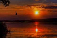 Underbar solnedgång över sjön Arkivbild