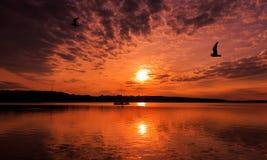 Underbar solnedgång över sjön Arkivbilder
