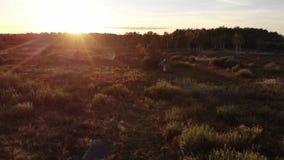 Underbar solnedgång i höstaftonen, skönhet av naturen, naturlig effekt för linssignalljus Träkoja i mitt av ängen lager videofilmer