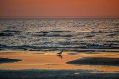 underbar solnedgång vid havet fotografering för bildbyråer