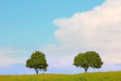 Underbar sommarpanorama i juli, hed för LÃ-¼neburg arkivbilder