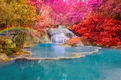 Underbar vattenfall med regnbågar i djup skog på nationalparken Royaltyfria Foton
