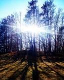 Underbara former av solljus Royaltyfria Bilder