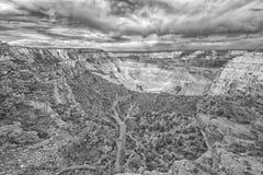Underbara Grand Canyon norr Rim View i svartvitt arkivfoto