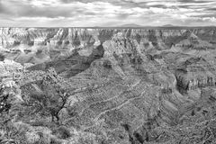 Underbara Grand Canyon norr Rim View i svartvitt arkivfoton
