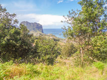 Underbara landskap från madeira Royaltyfri Fotografi
