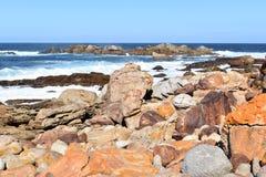 Underbart landskap på den fotvandra slingan på den Robberg naturreserven i den Plettenberg fjärden, Sydafrika Arkivbild