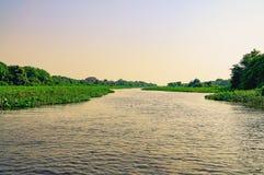 Underbart landskap på solnedgången av det översvämmade vattnet av Pantanal arkivfoto
